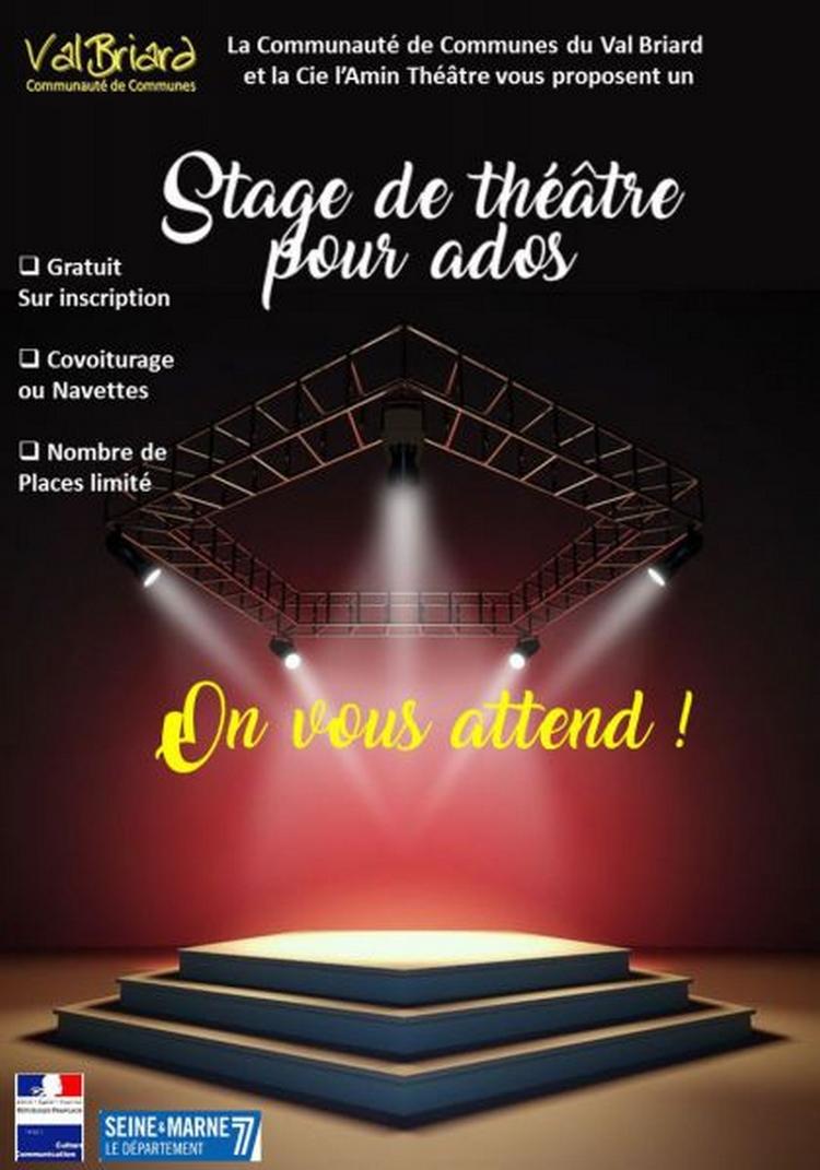 Stage Théâtre pour les ados - Val Briard