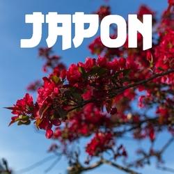 Japon - Médiathèque Presles-en-Brie