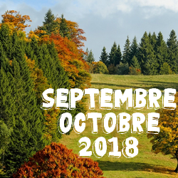 Médiathèque de Presles-en-Brie - Nouveautés Septembre-Octobre 2018